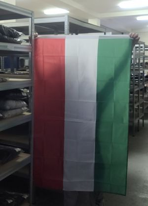 Flagge Ungarns